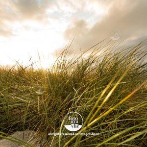 duin duinen Vlieland foto - fotograaf vlieland - portfolio fotogravlie
